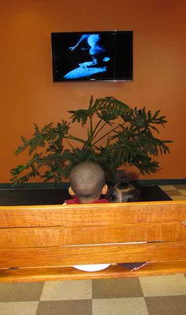 Toddler thursdays mt rainier nature and recreation for Indoor gardening rainier oregon