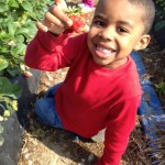 """Know Before You Go""  Pick-Your-Own-Fruit Season Begins with Sweet Start: Shlagel Farms"